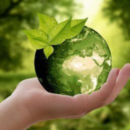 imagen de contamina la biomasa